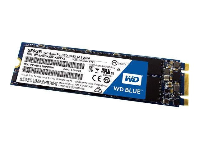 WD Blue SSD 250GB WDS250G1B0B M.2